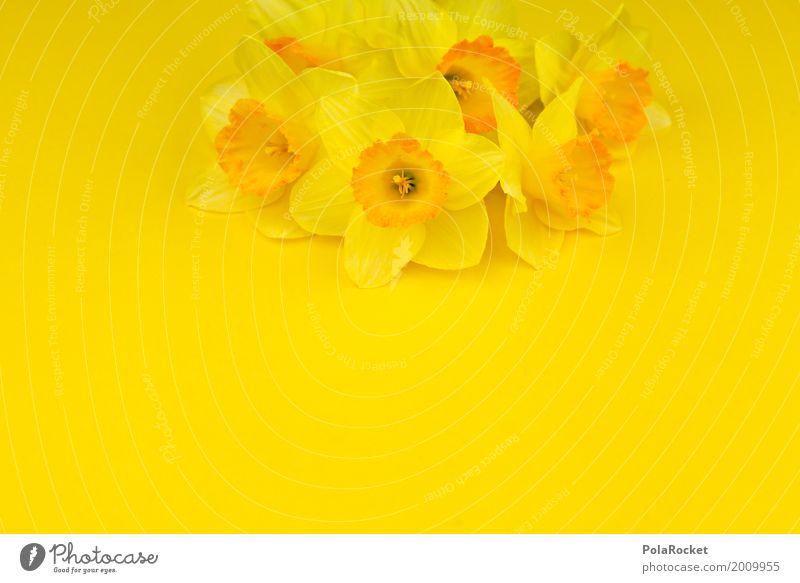 #AS# Ostergelb IV Kunst Kunstwerk ästhetisch Narzissen Ostern Osterwunsch Ostermontag Ostergeschenk Blumenstrauß knallig Farbfoto mehrfarbig Innenaufnahme