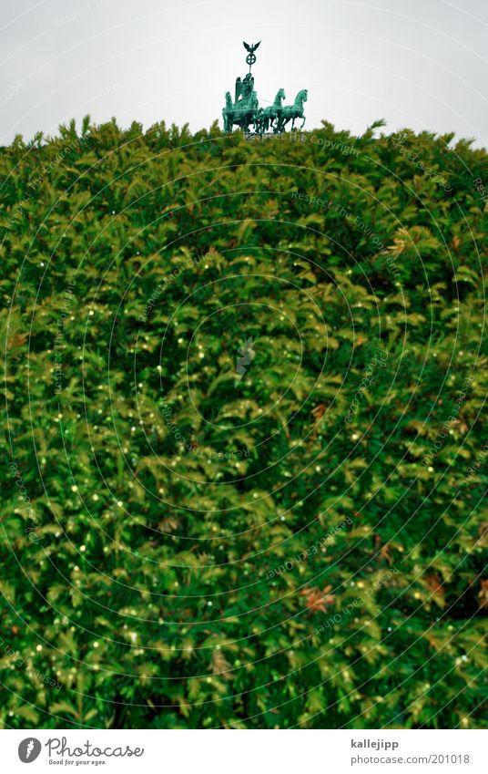 george w. bush zu besuch in berlin Mensch Natur grün Baum Pflanze Ferien & Urlaub & Reisen Tier Umwelt Berlin Park Kunst Tourismus Sträucher Pferd Wahrzeichen Skulptur