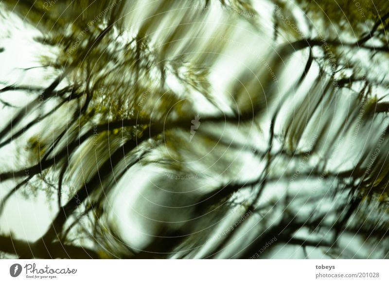 Volltrunken Umwelt Natur Wasser Wellen fließen Wasserwirbel biegen unklar Unschärfe träumen spukhaft Farbfoto Außenaufnahme Experiment abstrakt Muster