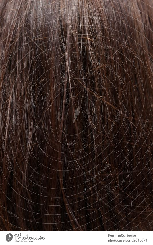 Haarstruktur (03) Farbe schön Haare & Frisuren braun langhaarig brünett rotbraun Haare schneiden Haarstrukturen glatte Haare