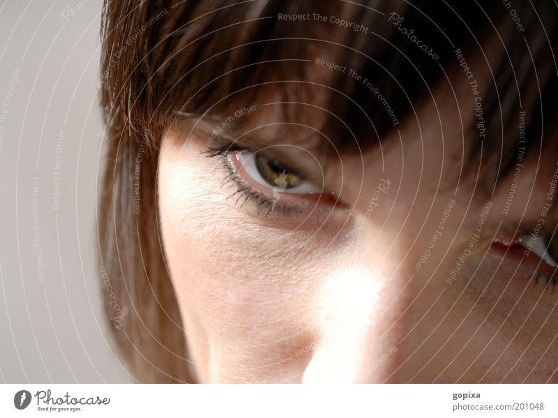 Wütend Frau Mensch Gesicht Auge kalt feminin Gefühle grau braun Angst Erwachsene gefährlich bedrohlich Wut Stress brünett