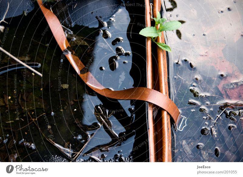 verlassener koffer... dreckig nass kaputt Müll Koffer Umweltverschmutzung Gepäck Wasseroberfläche
