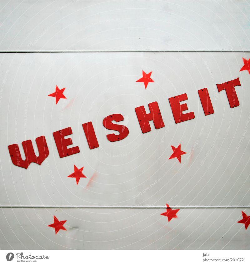 ein bisschen weisheit für alle... weiß rot Schriftzeichen Stern (Symbol) Zeichen Weisheit Optimismus Verantwortung Redewendung Tatkraft