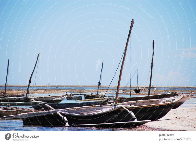 Strandung blau Meer Ferne Umwelt Küste Holz Horizont liegen Ordnung Idylle authentisch Schönes Wetter einfach malerisch Gelassenheit Wolkenloser Himmel
