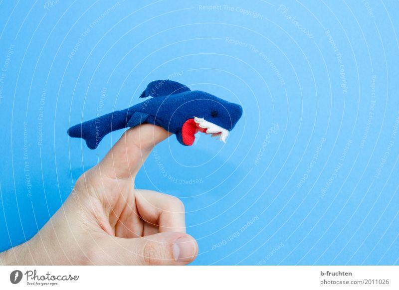 Vorsicht bissig! Finger Puppentheater Meer Aquarium Spielen Aggression bedrohlich wild Wut blau Farbe Inspiration Haifisch filzfigur Filz Zähne Gebiss