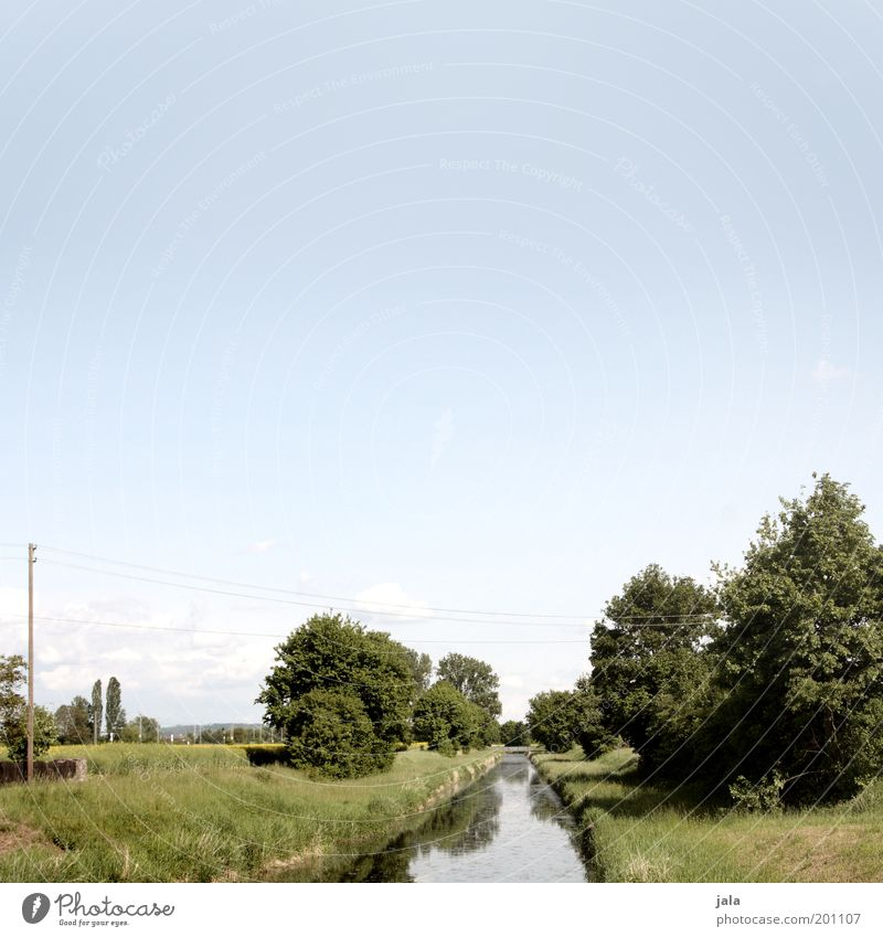 schönwettertag Natur Wasser Himmel Baum grün Pflanze Wiese Gras Landschaft Feld Fluss Landwirtschaft Schönes Wetter Strommast Bach Grünpflanze