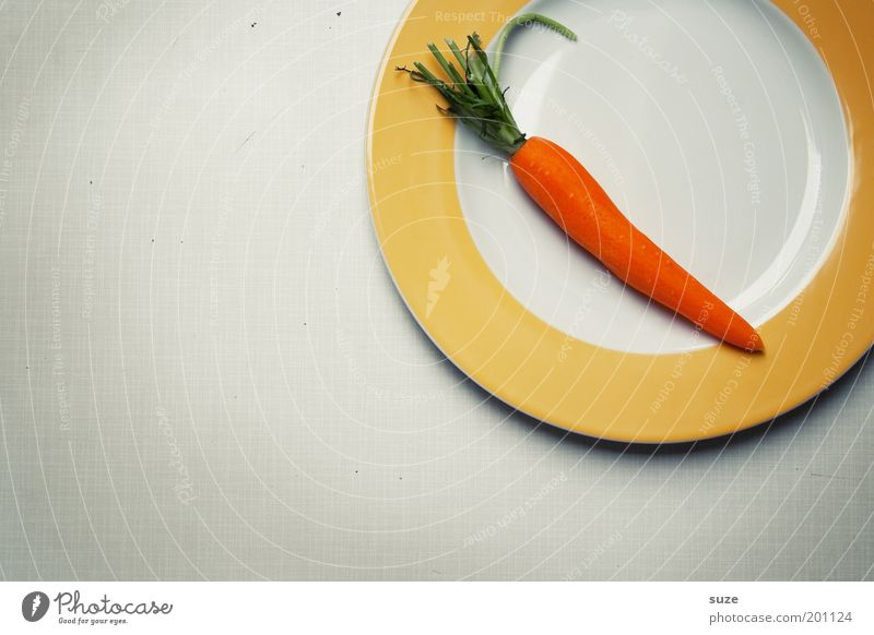 Hasenfutter grün Gesundheit orange Ernährung Gemüse Appetit & Hunger lecker Teller Stillleben Bioprodukte ökologisch Mahlzeit Diät Möhre Wurzelgemüse Mittag