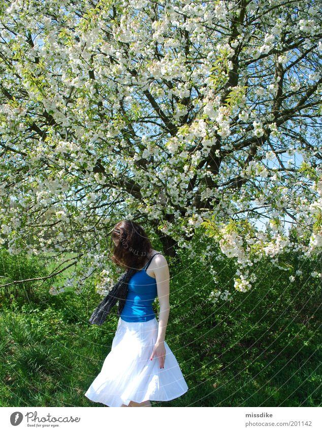 drehdichdrehdich. Mensch Natur Jugendliche Baum Pflanze Wiese feminin Blüte Gras Bewegung Frühling Freiheit Park Tanzen Erwachsene