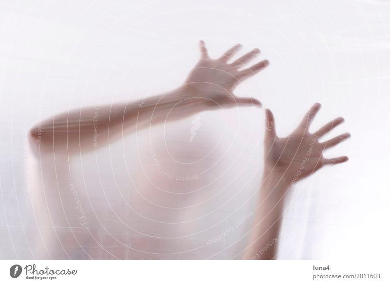 Hände 4 Mensch Frau Jugendliche Junge Frau Hand Einsamkeit 18-30 Jahre Erwachsene Traurigkeit feminin Angst verrückt Sicherheit Schutz Trauer Sehnsucht