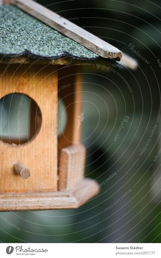 Sturmfrei klein Futterhäuschen Tierliebe Vogelkäfig Haus leer Einsamkeit Unbewohnt Dachgiebel Fenster gemütlich Gedeckte Farben mehrfarbig Menschenleer