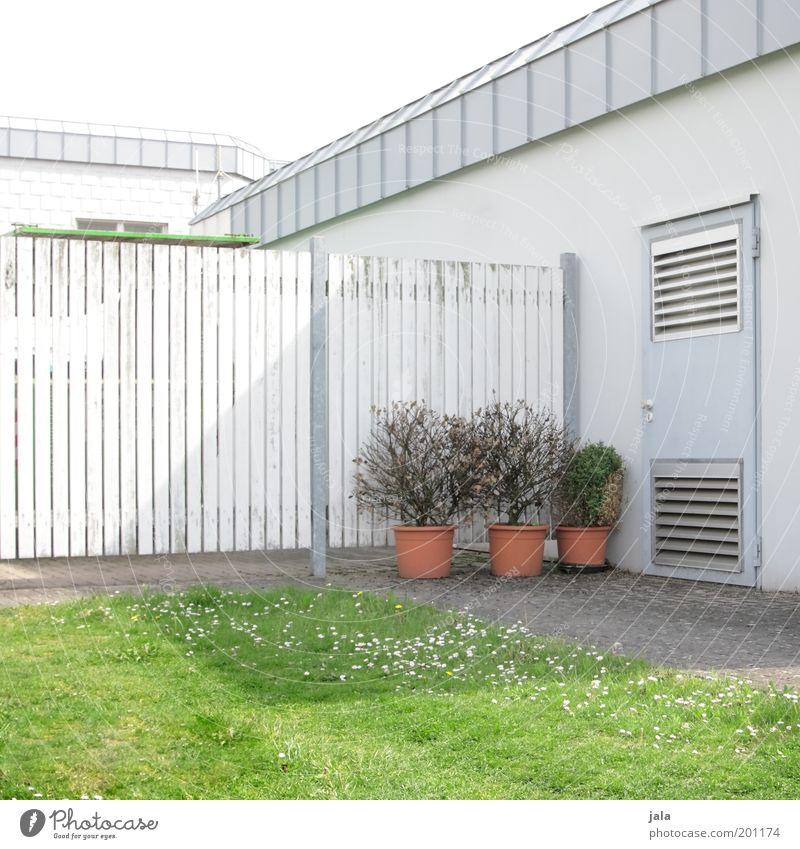 überlebenstraining weiß grün Haus Wiese Gebäude hell Tür Platz Rasen Sträucher Zaun Grünpflanze Topfpflanze Gartenzaun