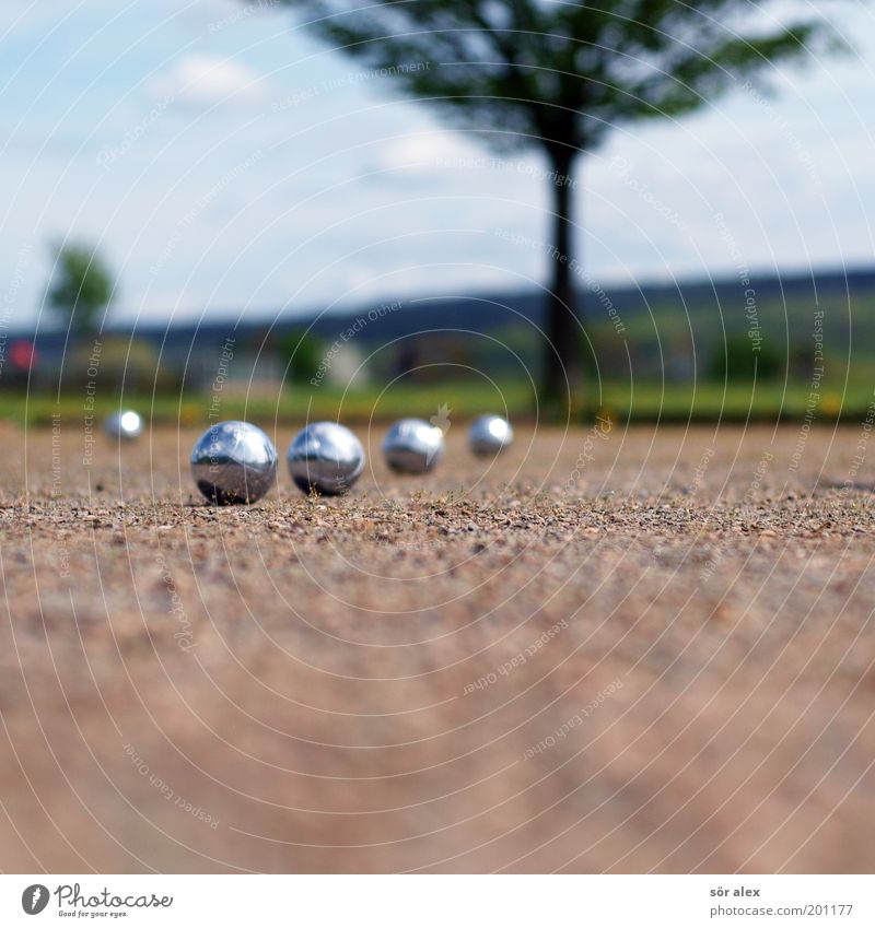 Boule-ACTION Karriere Erfolg Team Sand Sommer Baum Gras Metall Kugel blau braun grün silber ruhig Freizeit & Hobby Textfreiraum unten 4 zielstrebig Unschärfe