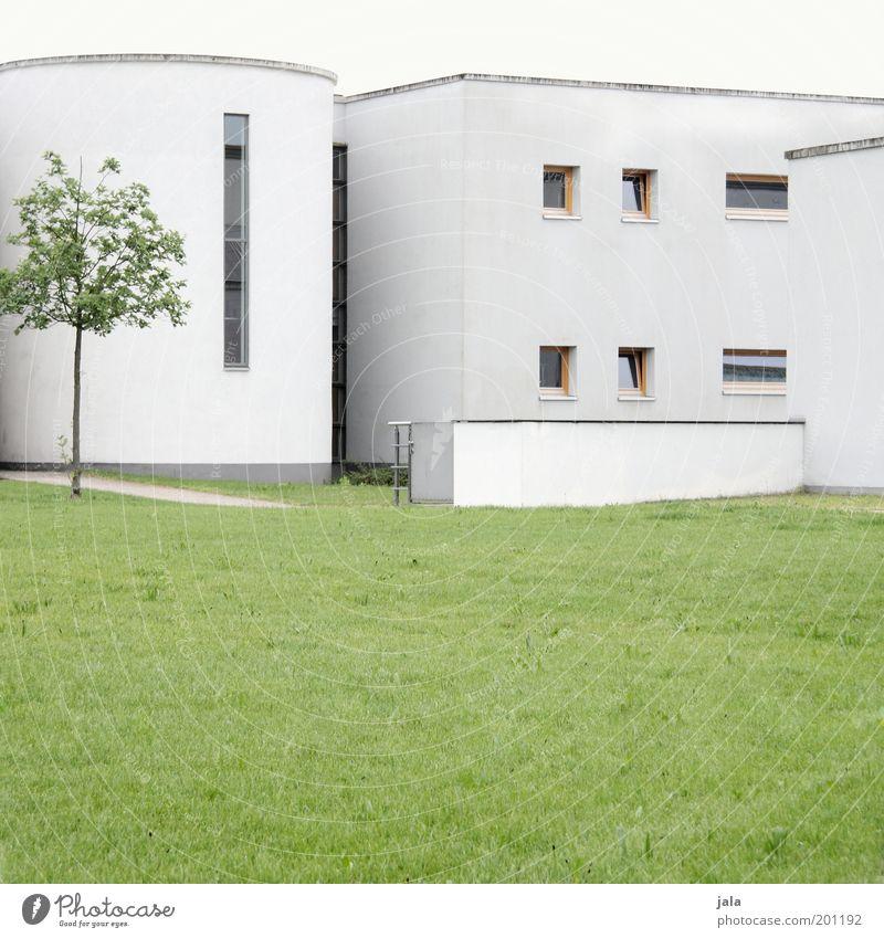 zentrum Himmel weiß Baum grün Haus Wiese Fenster Gras Gebäude Architektur Fassade ästhetisch trist Sauberkeit Gewerbe