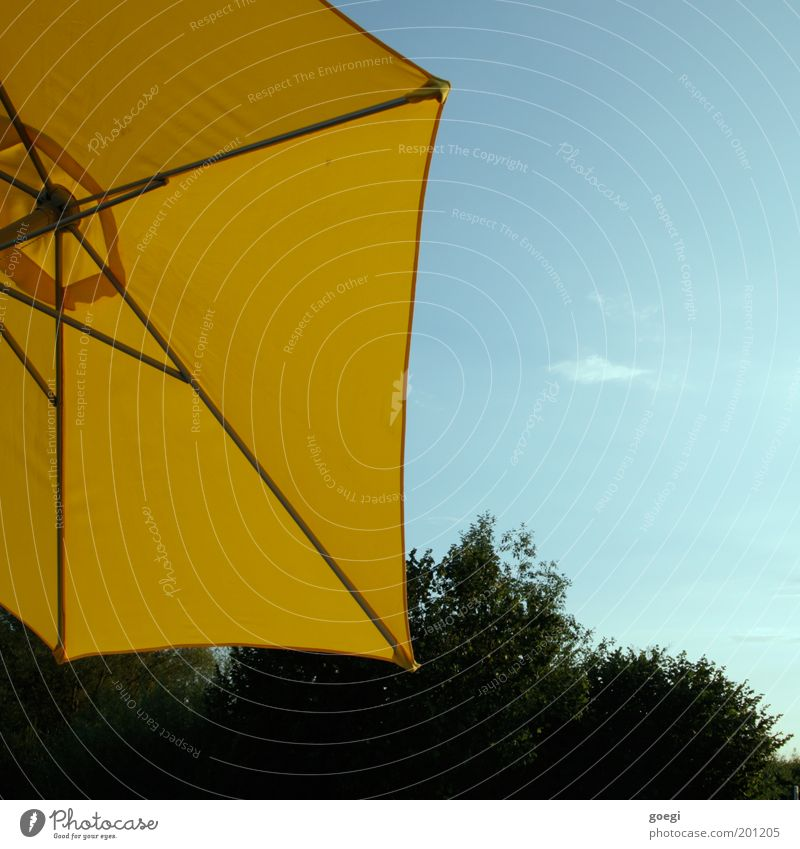 Parasol Himmel Baum Sonne grün blau Sommer Ferien & Urlaub & Reisen gelb Erholung Garten Zufriedenheit orange Freizeit & Hobby Lebensfreude Warmherzigkeit Stoff