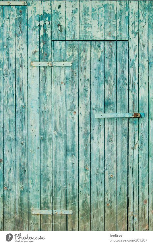 immer noch besetzt...aber diesmal entzerrt ;) schön alt blau Garten Holz Tür geschlossen Lifestyle Häusliches Leben Bauernhof Neugier Scheune Holzwand Haus Schrebergarten