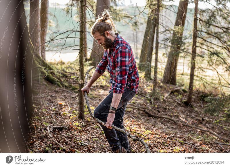 sammeln maskulin Junger Mann Jugendliche Erwachsene 1 Mensch 18-30 Jahre 30-45 Jahre Umwelt Natur Sommer Wald Coolness einzigartig nachhaltig natürlich Hipster