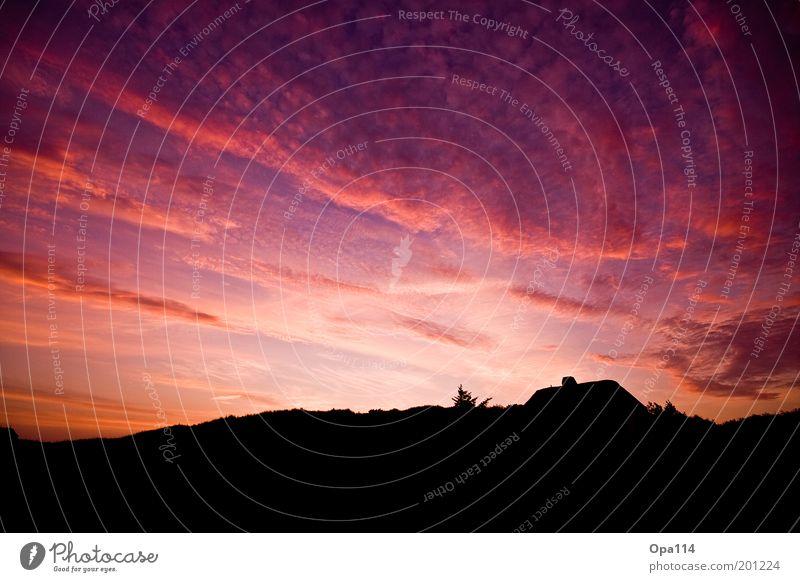 love is in the air Natur Landschaft Himmel Wolken Sonnenaufgang Sonnenuntergang Sommer Schönes Wetter Haus Einfamilienhaus Traumhaus Dach Erholung träumen