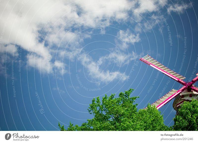 Wolken- und Baumfriseur Schere Erneuerbare Energie Himmel Schönes Wetter Wind Laubbaum Park Bremen Mühle Windmühle Windmühlenflügel Sehenswürdigkeit Wahrzeichen