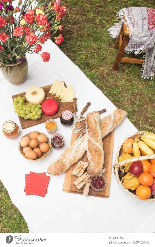 Picknick im Garten Ferien & Urlaub & Reisen Sommer Freude Ferne Lifestyle Gras Glück Lebensmittel Party Freizeit & Hobby Frucht Park Ausflug Ernährung