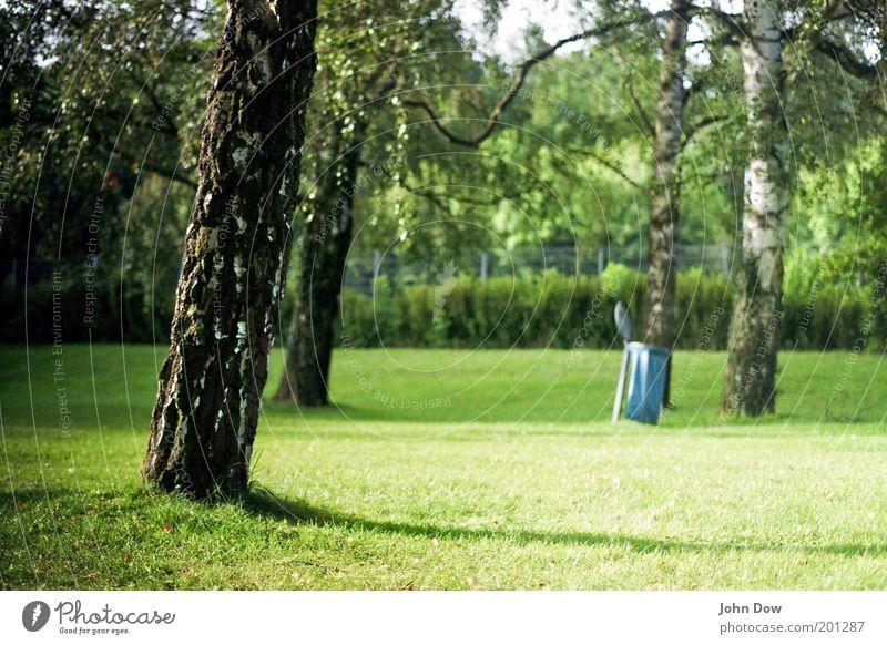 Freibadwetter Erholung ruhig Ferien & Urlaub & Reisen Sommer Schönes Wetter Pflanze Baum Gras Sträucher Park Wiese Wärme Zufriedenheit Idylle Müllbehälter