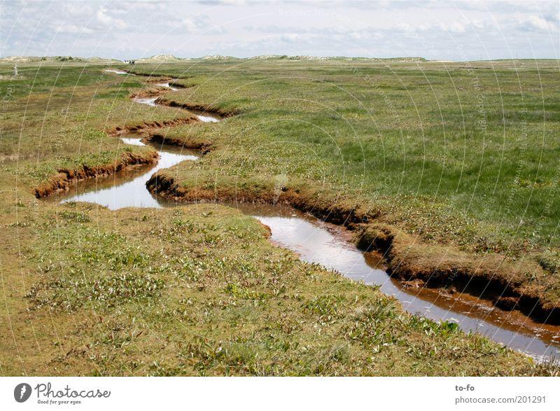 ~ Natur Wasser ruhig Wiese Frühling Freiheit Landschaft Insel Tourismus Fluss Schönes Wetter Nordsee Ferien & Urlaub & Reisen Schlangenlinie