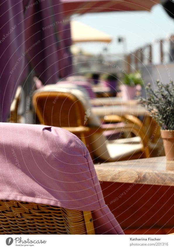 Rosa Strandcafe I grün Pflanze Sommer Ferien & Urlaub & Reisen ruhig Erholung braun rosa Tisch Stuhl Café Sonnenschirm genießen Schönes Wetter Blumentopf