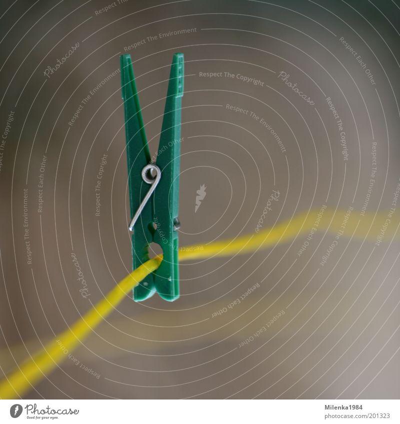 Durchhalten grün gelb Linie Metall festhalten Kunststoff trocken Haushalt Wäscheleine Klammer Detailaufnahme Licht Wäscheklammern