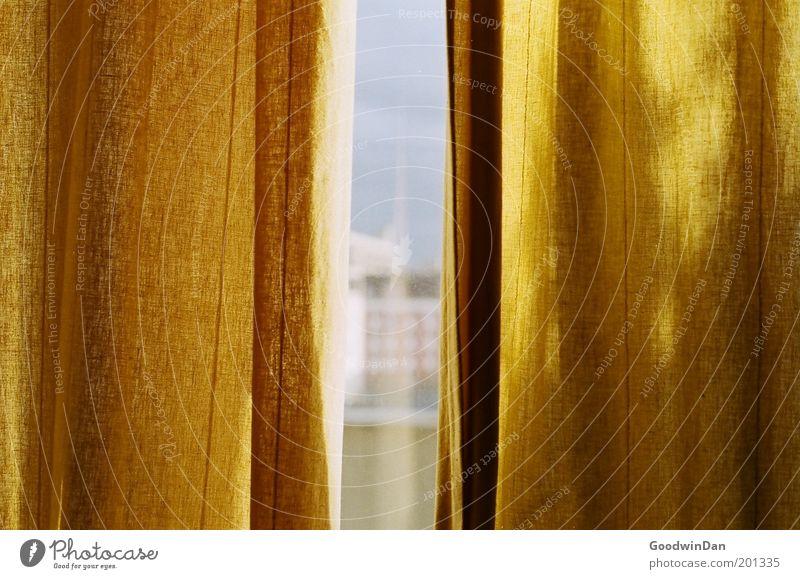Bright Day Vorhang authentisch schön Wärme Farbfoto Innenaufnahme Tag Fensterscheibe Fensterplatz Fensterblick Durchblick