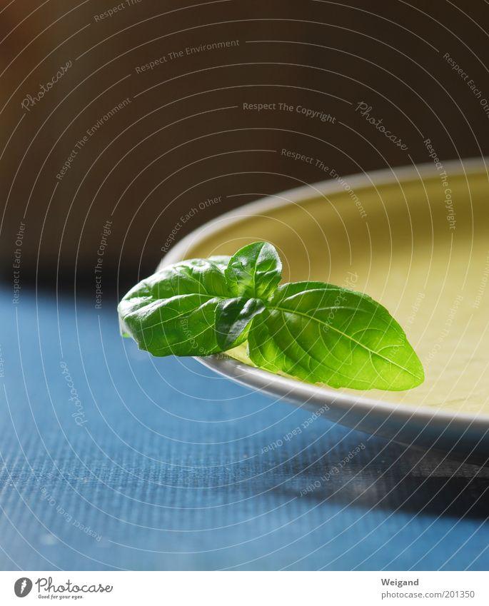 Canzone italiano blau grün Lebensmittel Ernährung genießen Kräuter & Gewürze lecker Teller Bioprodukte Salat Salatbeilage Vegetarische Ernährung Basilikum Slowfood Tellerrand Basilikumblatt