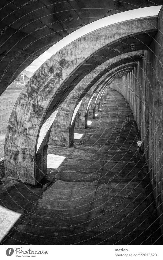 immer an der wand lang Hafen Bauwerk Architektur Mauer Wand Tunnel laufen dunkel schwarz weiß Kurve Beton Licht Schatten Hafenmauer Schwarzweißfoto