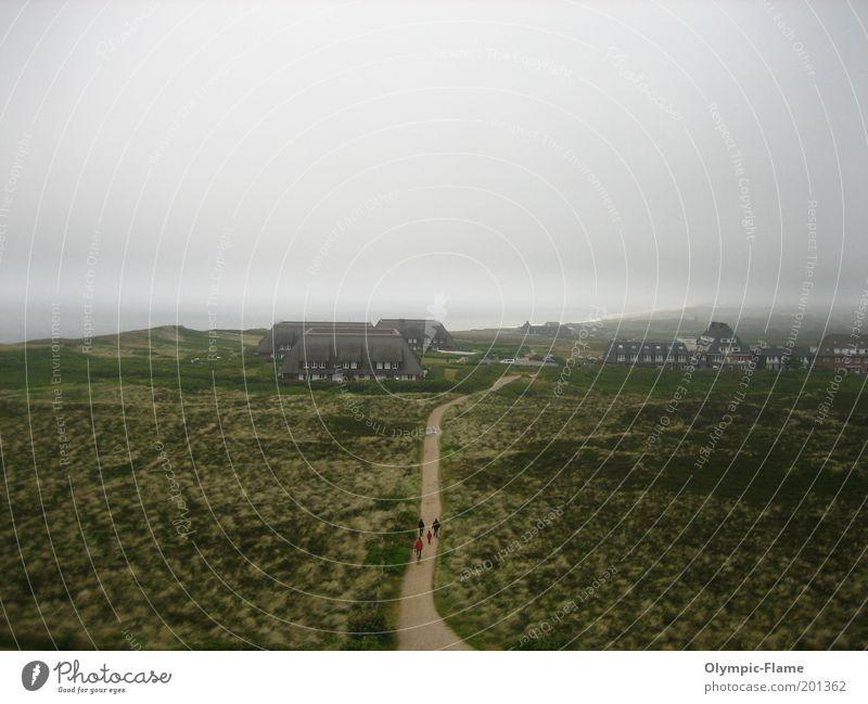 Sylter Sturm Umwelt Natur Landschaft Horizont Sommer Herbst Klima Wetter schlechtes Wetter Wind Hügel Küste Nordsee Insel grau grün Stimmung Farbfoto