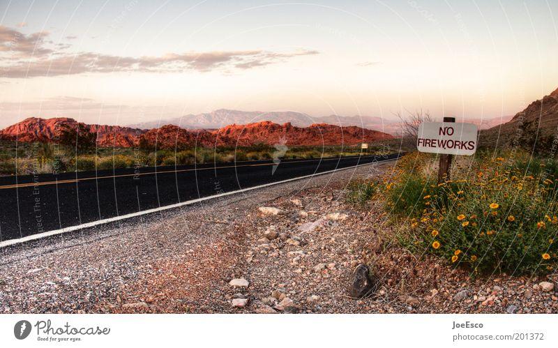 no fireworks! Natur Himmel Blume Pflanze Ferien & Urlaub & Reisen Wolken Ferne Straße Leben Gras Berge u. Gebirge Freiheit Landschaft Schilder & Markierungen Horizont Abenteuer