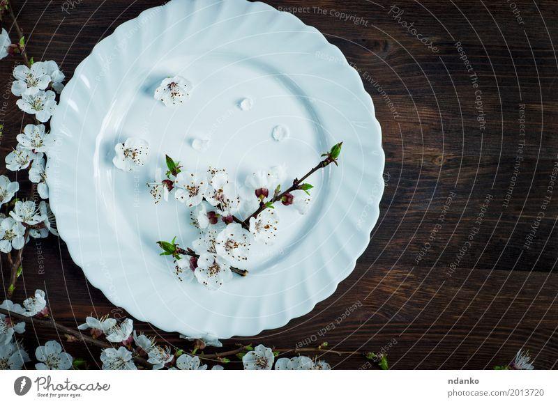Keramische weiße Platte auf einer braunen Oberfläche Mittagessen Abendessen Teller Tisch Küche Restaurant Blume Platz Holz alt oben retro Speise Mahlzeit