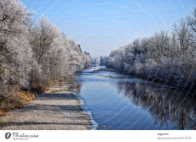 Fluss an einem kalten Wintertag Natur Landschaft Wasser Himmel Schönes Wetter Baum Wald Flussufer Sonnental St. Gallen Schweiz Europa Gelassenheit Verzweiflung