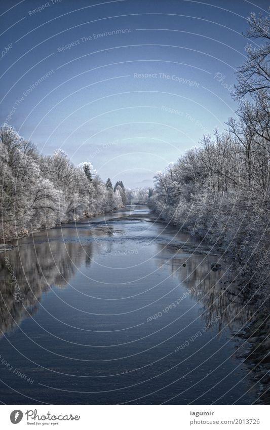 Stiller Fluss im Winterschlaf Landschaft Wasser Himmel Eis Frost Baum Flussufer Sonnental St. Gallen Schweiz Europa ästhetisch Coolness frisch schön kalt