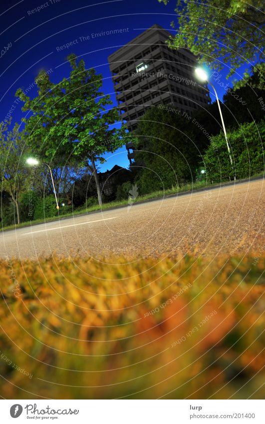Der Letzte macht das Licht aus Natur blau grün Baum Pflanze Haus Straße Architektur Gras Gebäude Hochhaus Bauwerk Verkehrswege Straßenbeleuchtung