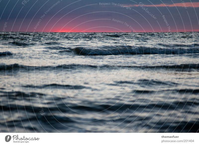 Fernweh Himmel Wasser blau rot Sommer Ferien & Urlaub & Reisen Meer Ferne Freiheit Wellen rosa Horizont Romantik Ziel Sehnsucht Sturm