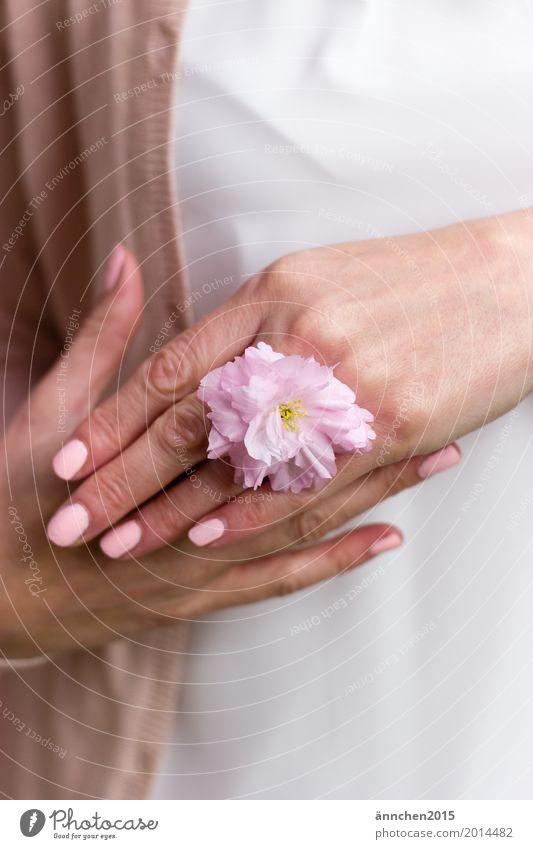 Blütenring festhalten rosa Blume Kirschblüten Kirsche Hand behüten puderfarben Pastellton zart Liebe Ring Nagellack weiß Bluse Strickjacke