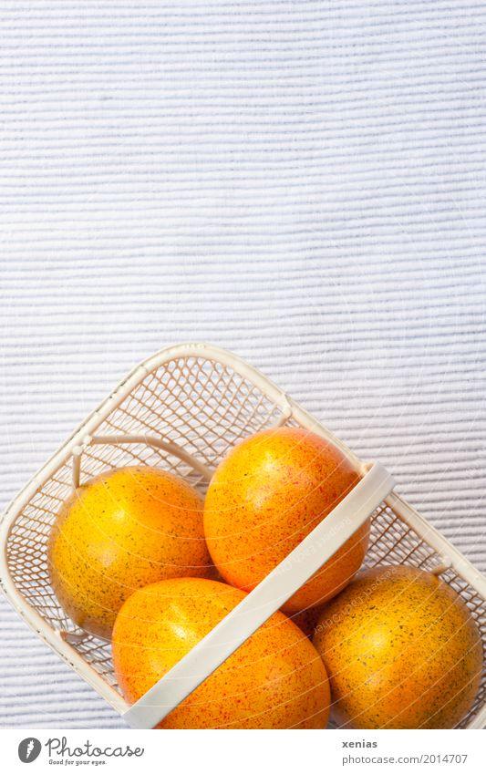 Ostereier im weissen Körbchen weiß gelb orange Metall Ernährung Ostern 4 Korb Ei