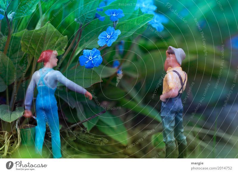 Miniwelten - Vergiss mein nicht Freizeit & Hobby Garten Mensch maskulin feminin Frau Erwachsene Mann 2 Pflanze Blume Sträucher Blatt Blüte Grünpflanze blau grün
