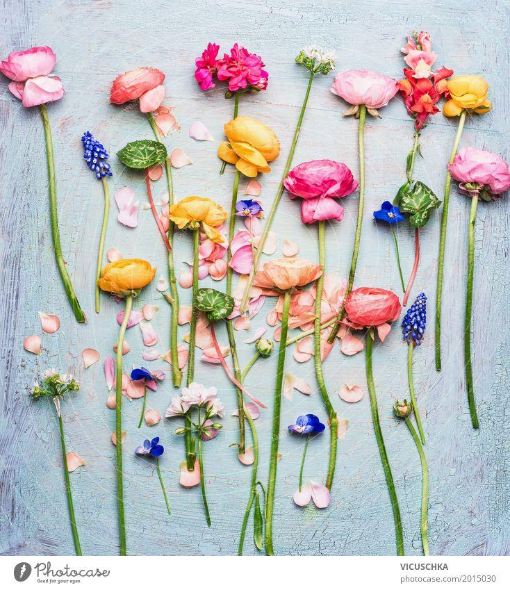 Bunte schöne Garten Blumen Auswahl Stil Design Sommer Häusliches Leben Dekoration & Verzierung Natur Pflanze Blatt Blüte Blumenstrauß Liebe Stillleben