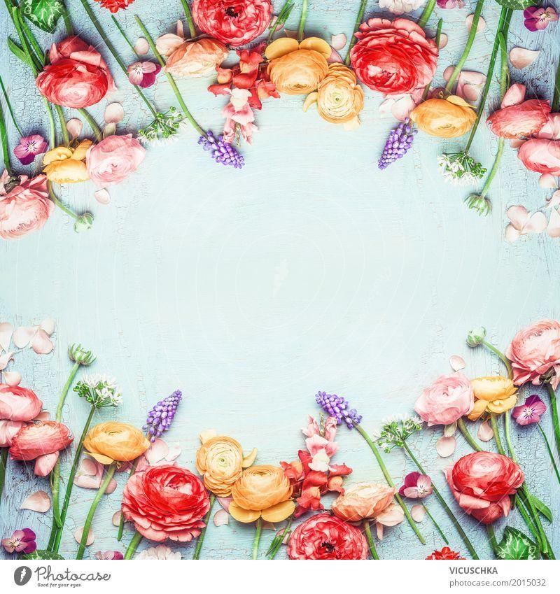 Rahmen mit schönen bunten Blumen Stil Design Garten Feste & Feiern Muttertag Hochzeit Geburtstag Natur Pflanze Frühling Sommer Blatt Blüte