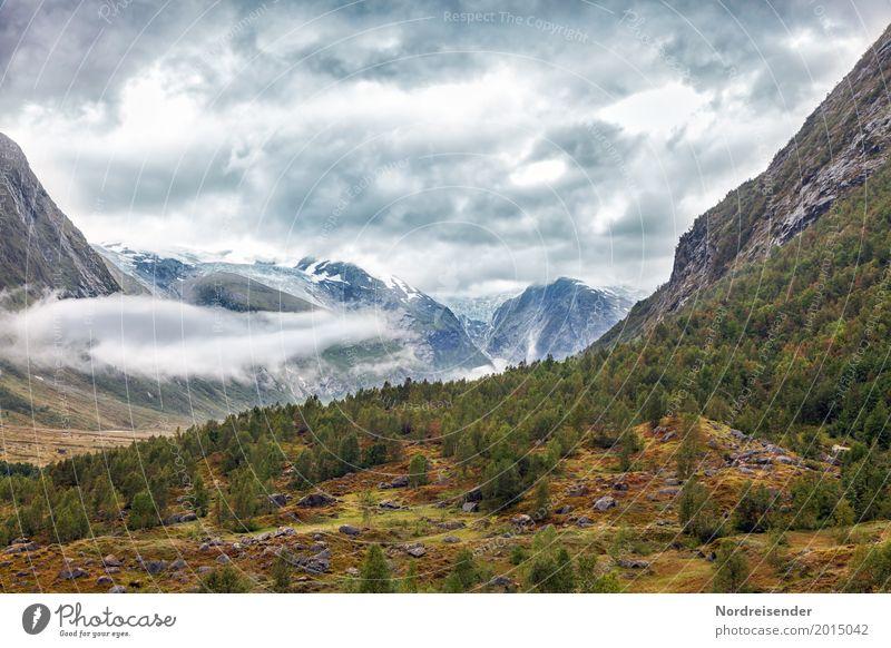 Canyon Ferien & Urlaub & Reisen Abenteuer Ferne Freiheit Berge u. Gebirge wandern Natur Landschaft Urelemente Himmel Wolken Wetter Baum Gras Moos Wiese Wald
