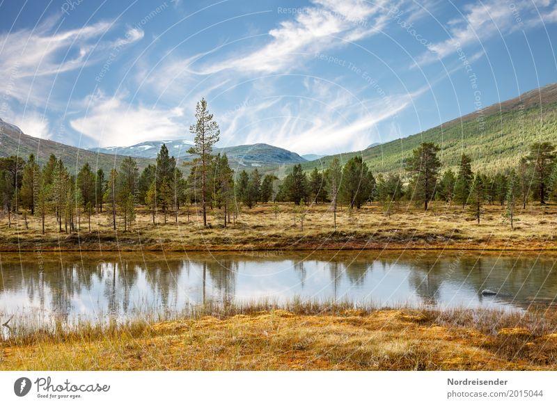 Wildnis Ferien & Urlaub & Reisen Abenteuer Freiheit Berge u. Gebirge wandern Natur Landschaft Wasser Himmel Wolken Schönes Wetter Baum Gras Wiese Wald Seeufer