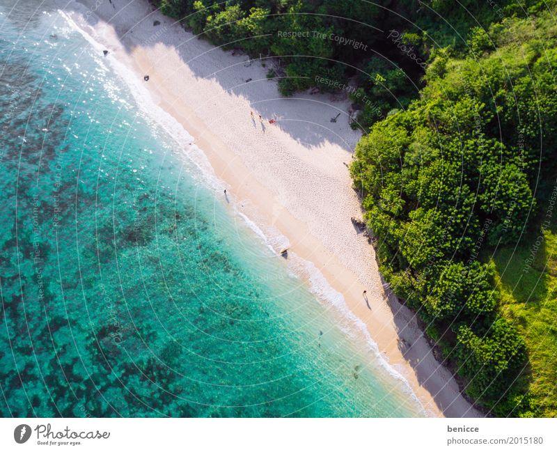 Urlaub von oben Strand Vogelperspektive Luftaufnahme hoch Ferien & Urlaub & Reisen Bali Indonesien Reisefotografie Sandstrand Wasser Meer Korallen Sommer Sonne