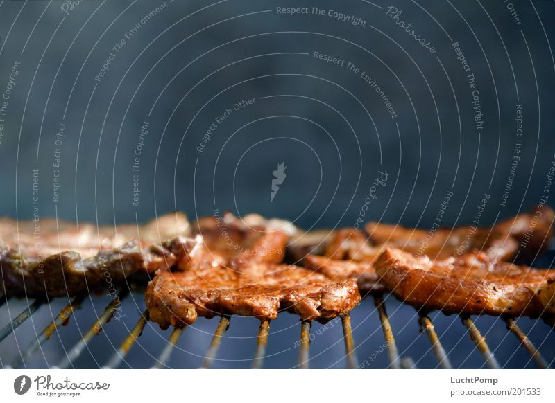 Haute Cuisine Ernährung Fleisch Steak Grillsaison Grillen Grillrost Rauch Duft Geruch gebraten saftig Fett ungesund Fleischgerichte Sommer Garten zart lecker