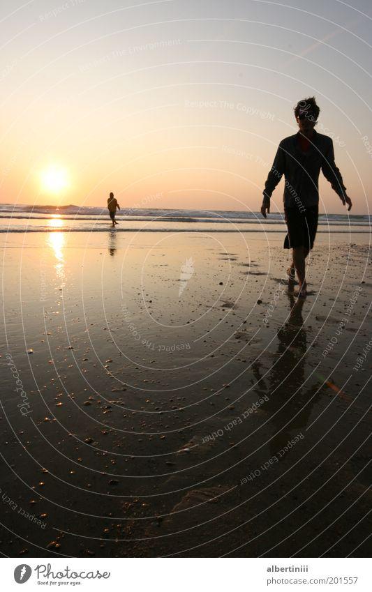 walking on the beach Mensch Mann Natur Jugendliche Wasser schön Sommer Strand Erwachsene Erholung Umwelt Landschaft Gefühle Küste Denken Wellen