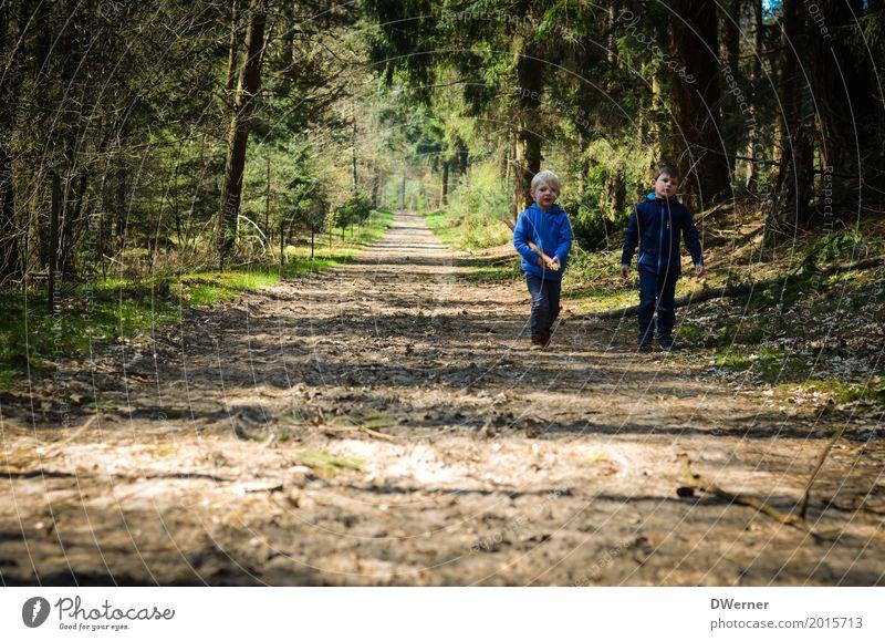 Waldspaziergang I Glück Freizeit & Hobby Ferien & Urlaub & Reisen Tourismus Ausflug Abenteuer Freiheit Kind Junge 2 Mensch Umwelt Natur Pflanze Frühling