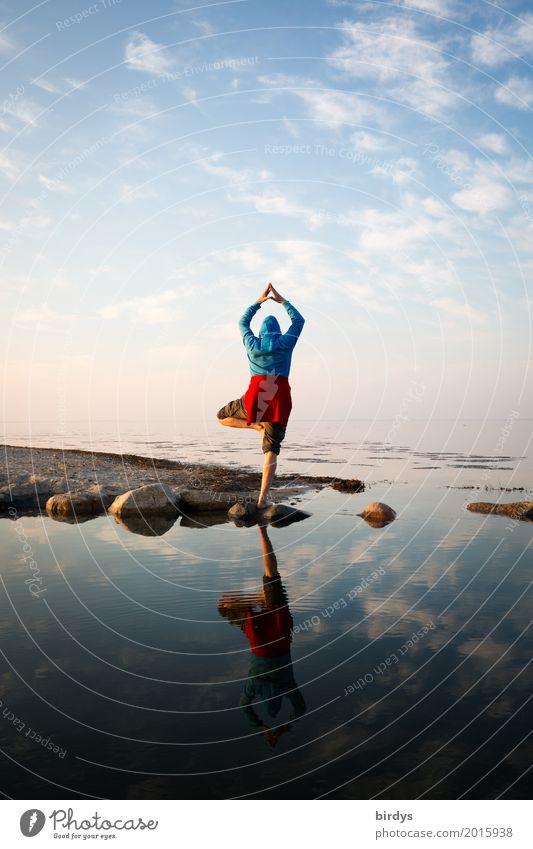 Mach mir den Baum Fitness harmonisch Wohlgefühl ruhig Meditation Ferien & Urlaub & Reisen Meer Yoga maskulin androgyn 1 Mensch 30-45 Jahre Erwachsene