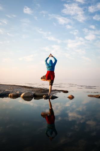Mach mir den Baum Mensch Himmel Natur Ferien & Urlaub & Reisen Wasser Meer Erholung ruhig Erwachsene Senior Gesundheit Küste Horizont Zufriedenheit maskulin